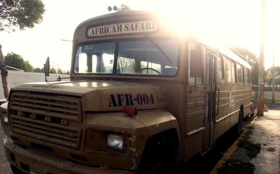 Unser Mitarbeiterbus - ein alter, amerikanischer Schulbus